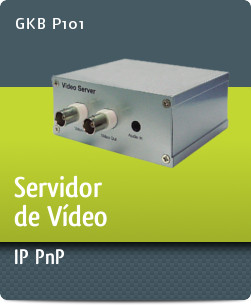 GKB P101