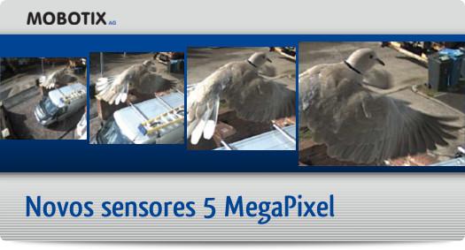 Sensores 5MP