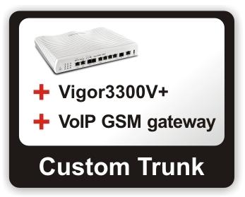 Custom trunk